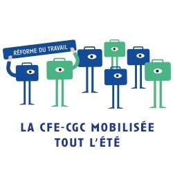 CFECGCMobilisee